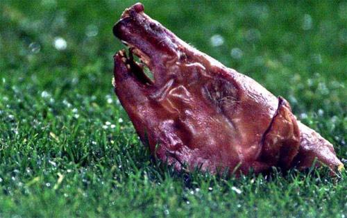 Futbol sahalarındaki en garip cisimler