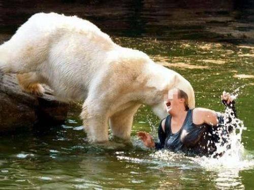 Vahşi hayvanların insanlara saldırısı