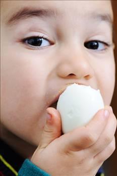 Sofraların vazgeçilmezi yumurta