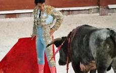 Katalanlar boğa güreşini yasakladı