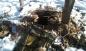 PKK'nın kullandığı sığınak ve depolar tahrip edildi