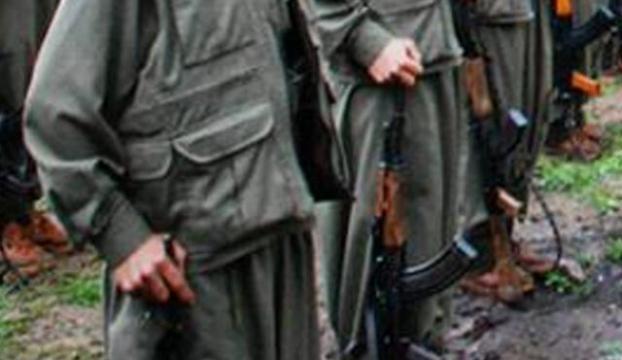 1 PKKlı tesklim oldu