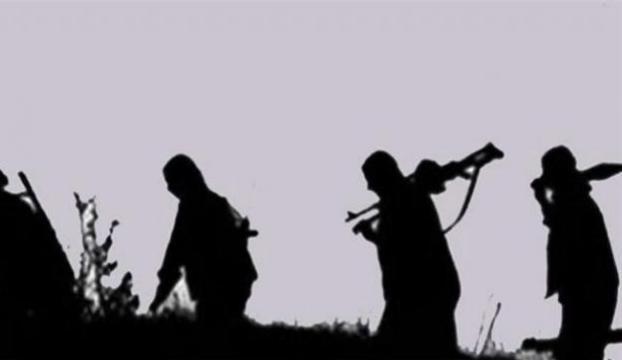 11 PKKlı teslim oldu