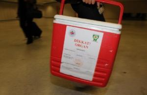 Türkiye'den üç kıtaya organ nakli için teknik destek