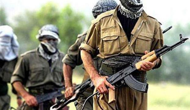 Şanlıurfada 10 terörist yakalandı