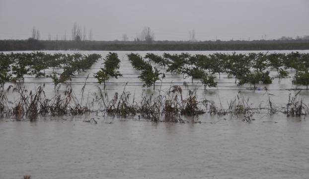 Doğal afetlerden zarar gören çiftçiye 780 milyon liralık tazminat ödenecek