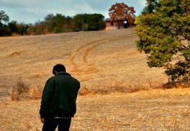 Ahlat Ağacı, Türkiye'nin Oscar adayı oldu