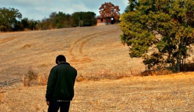 Ahlat Ağacı, Türkiyenin Oscar adayı oldu