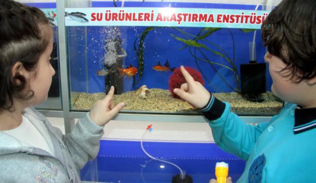 Elazığda akvaryum balıkları için hastane kuruldu