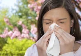 Dikkat alerji mevsimi geldi!