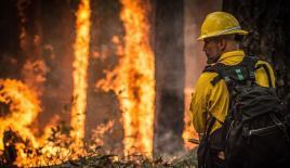 Avustralya'daki yangınlarda ölü sayısı 4'e yükseldi