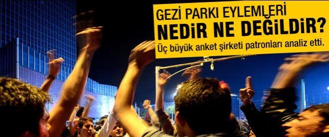 Anket şirketi sahiplerinin Gezi analizi