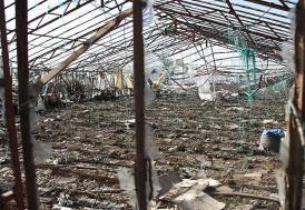 Antalya'da binlerce tarım alanı zarar gördü, 38 yaralı