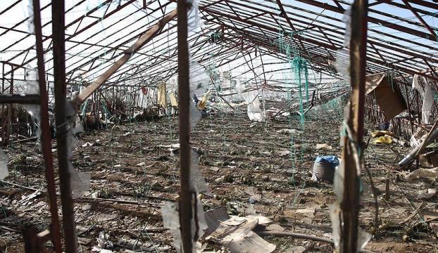 Antalyada binlerce tarım alanı zarar gördü, 38 yaralı