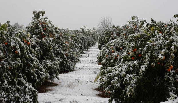 Antalyada kar yağışı