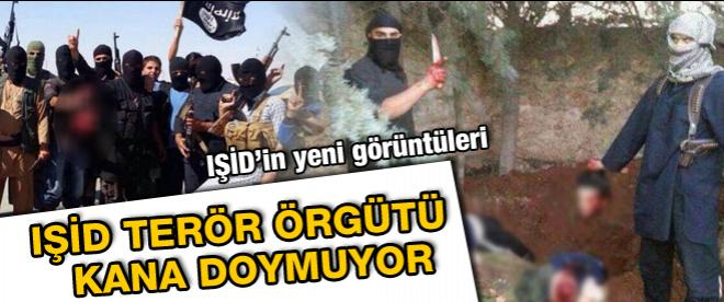 IŞİD terör örgütü kana doymuyor!