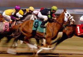 At yarışlarında TBMM Kupası Koşusu yarın yapılacak