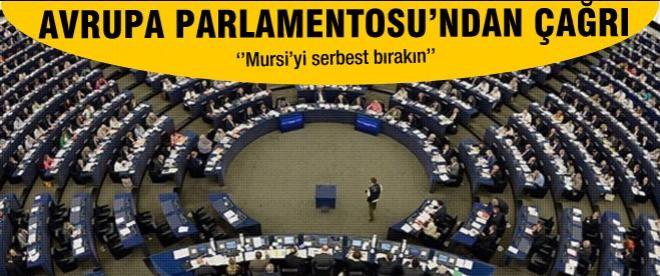 Avrupa Parlementosu'ndan Mısır'a çağrı