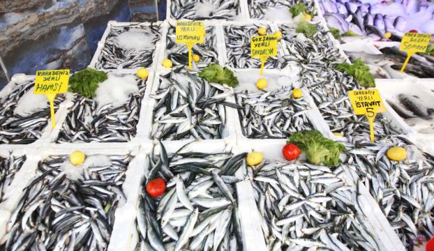 Akdeniz ve Egeye özgü balık türleri Karadenizde