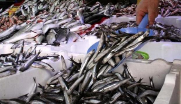 Kurban Bayramı balığı vurdu