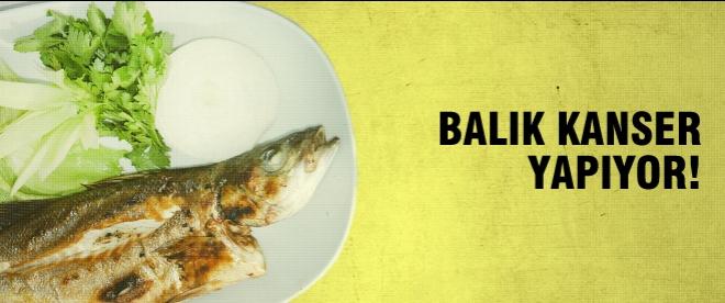 Balık kanser yapıyor