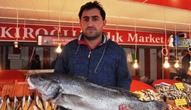 Balıkçıların ağlarına minekop takıldı
