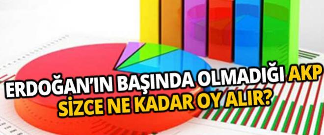 Başbakan Erdoğan'ın başında olmadığı Ak Parti ne kadar oy alır?