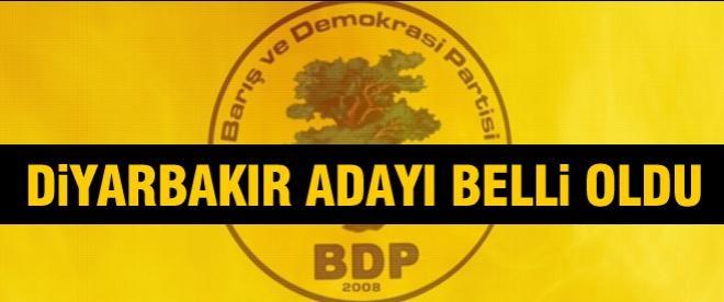 BDP'nin Diyarbakır adayı belli oldu