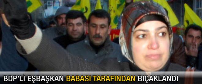 BDP'li Eşbaşkan babası tarafından bıçaklandı