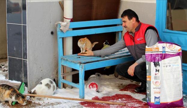 Berberin sokak hayvanı sevgisi