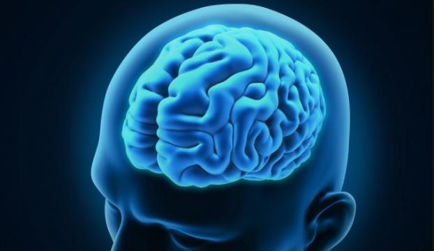 Beyin tümörünü yok eden bakteri bulundu