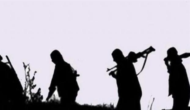Bingölde 2 PKKlı yakalandı