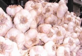 Sarımsağın atığı da antioksidan açısından değerli