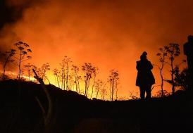 Bodrum'daki orman yangınında son durum