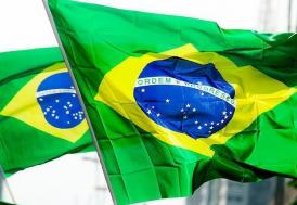 Brezilya'da kölelik şartlarında çalıştırılan 565 kişi kurtarıldı