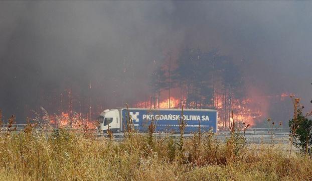Bulgaristan-Türkiye sınırındaki yangın
