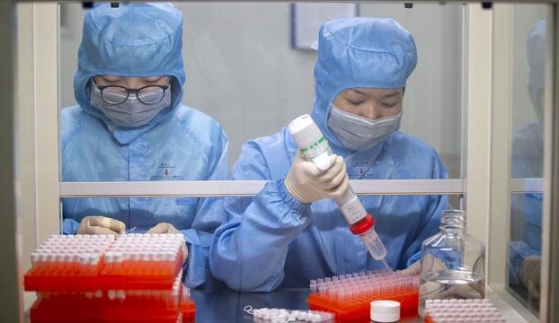 Kovid-19a karşı 3 yeni aşı adayının daha klinik denemelerine başlanacak