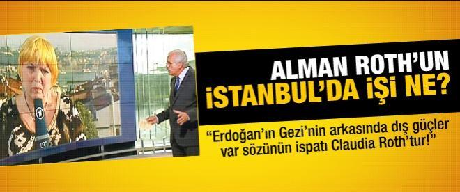 Alman Roth'un İstanbul'da işi ne?