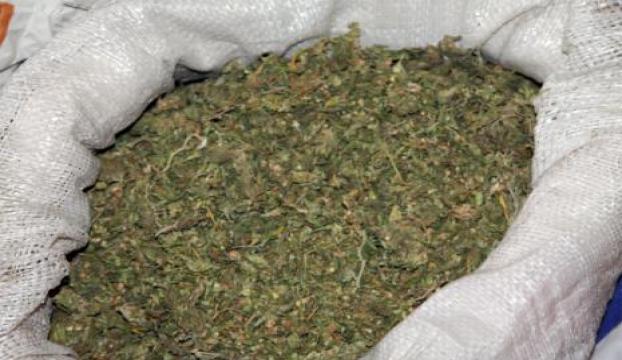 Bursada uyuşturucu operasyonu