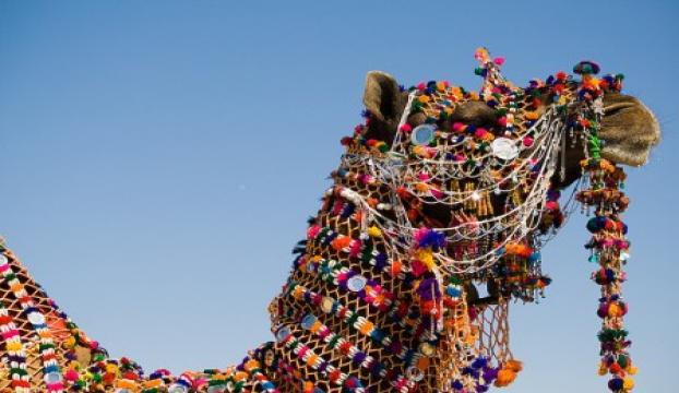 50 bin develi festival başladı