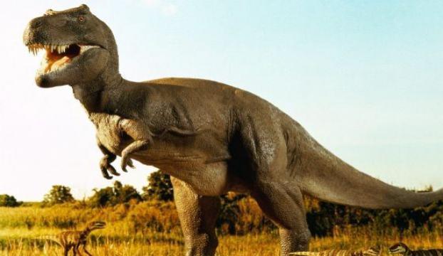 En büyük dinozorun fosilleri keşfedildi
