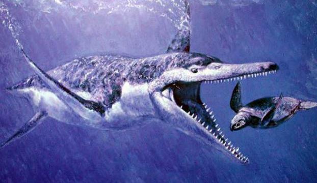 340 milyon yıllık dinazor bulundu