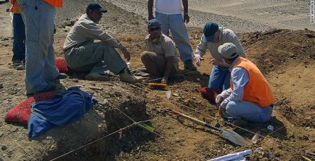 testSuudi Arabistan'da ilk dinozor kemikleri keşfedildi