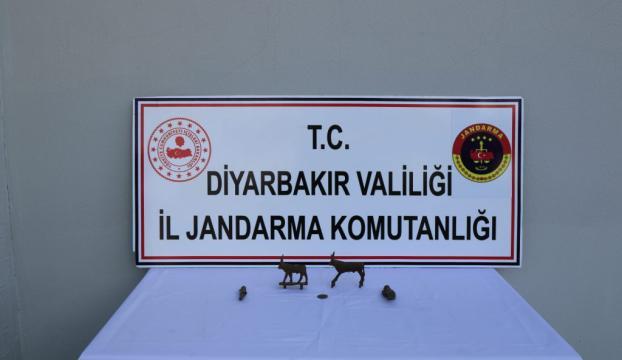 Diyarbakırda tarihi eser operasyonu