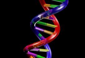 Sigara DNA'yı değiştiriyor