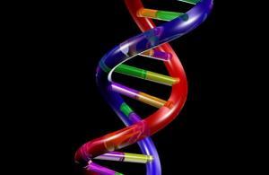 Güneşin zararlı ışınlarına karşı şeffaf DNA filmleri