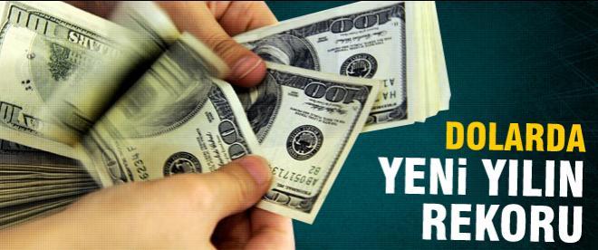Dolarda yeni yıl rekoru