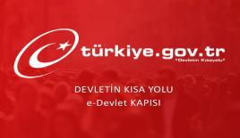 """Türkiye'nin """"muhtarı"""" e-Devlet"""