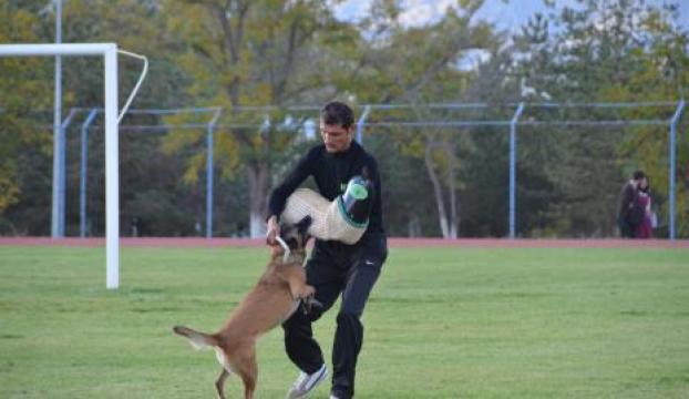 Eğitimli köpekler maharetlerini sergiledi