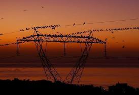 EPDK, elektriğe zam yapılmayacağını açıkladı